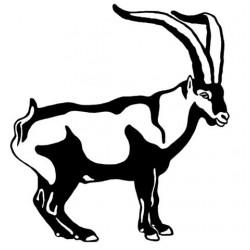 PEGATINA DE CABRA HISPANICA -18