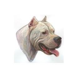PEGATINA DE CABEZA DE DOGO ARGENTINO - 36