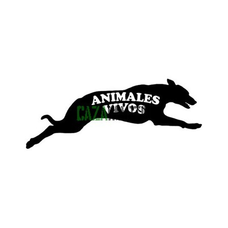 ANIMALES VIVOS - 56