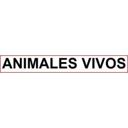 ANIMALES VIVOS - 57